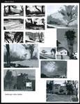 Landscape value studies
