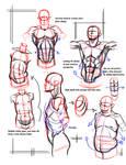 simple form breakdown abs2