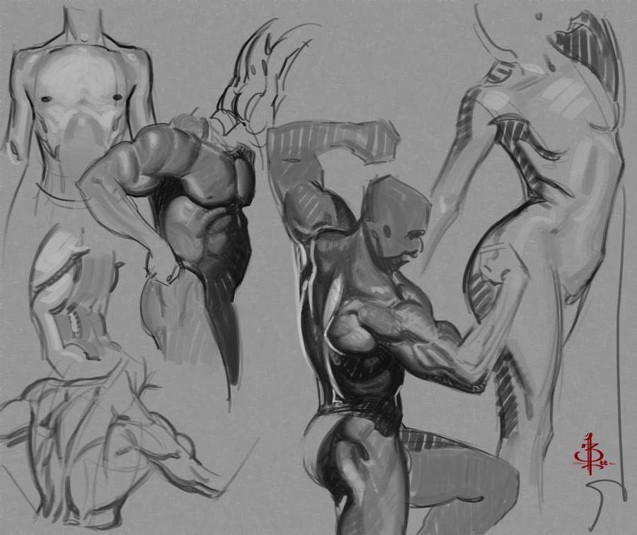 Some flow/anatomy studies by FUNKYMONKEY1945