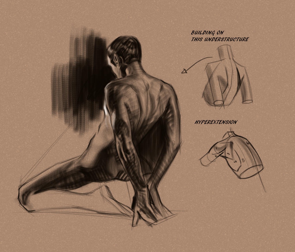 Quick Back Study by FUNKYMONKEY1945