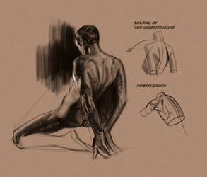 Quick Back Study by FUNKYMONKEY1945