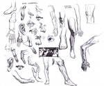 Various Studies