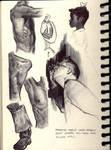 Various Studies20