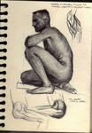 Various Studies32