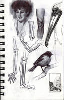 Various Studies47 by FUNKYMONKEY1945