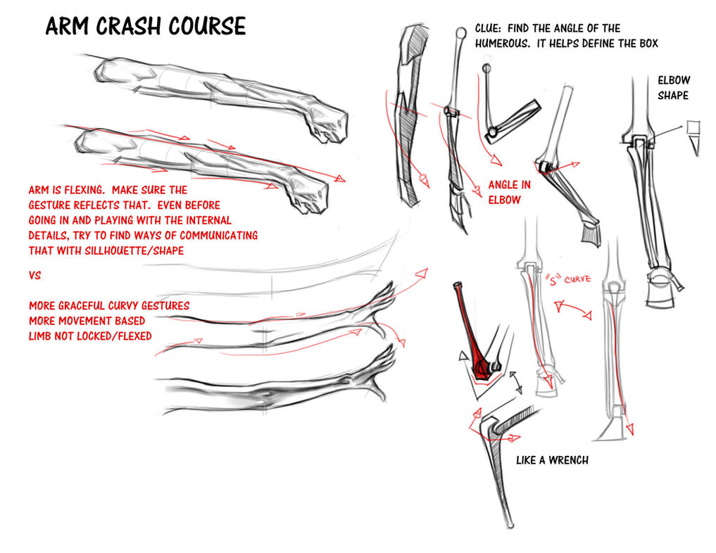 Arm Crash Course by FUNKYMONKEY1945 on DeviantArt