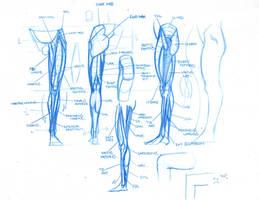 Structural Anatomy In Class Demo by FUNKYMONKEY1945