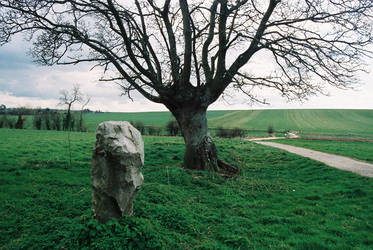 Wiltshire 3 by AWanderer01