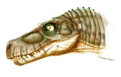 Herrerasaurus by Gonzalezaurus