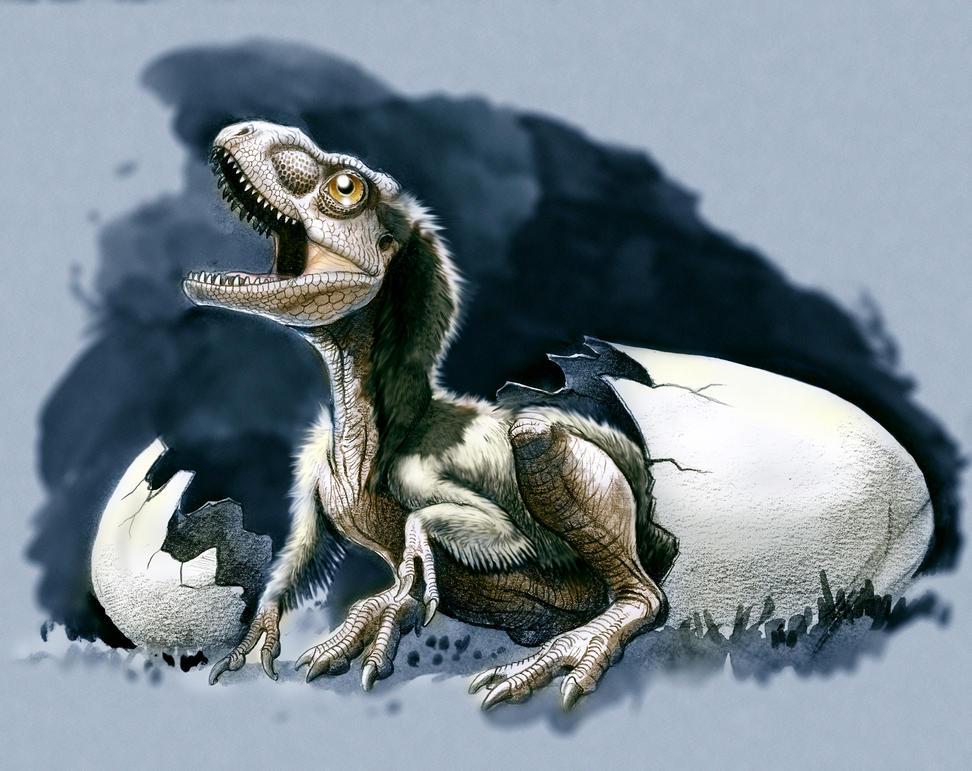 cria de tyrannosaurus by Gonzalezaurus