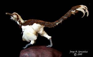 buitreraptor by Gonzalezaurus