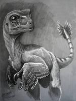 raptor by Gonzalezaurus