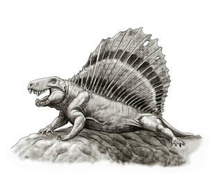 Dimetrodon by Gonzalezaurus