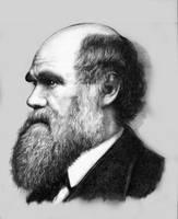 Darwin by Gonzalezaurus