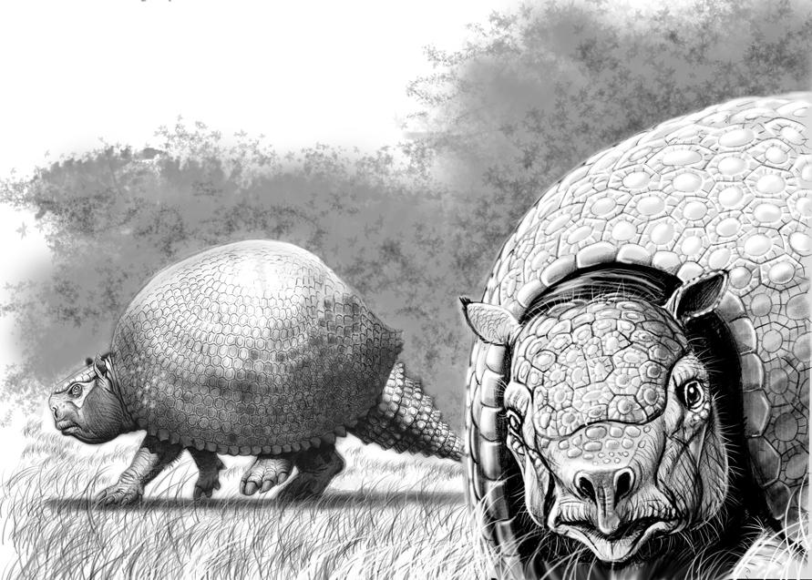 http://fc03.deviantart.net/fs71/f/2010/262/1/a/glyptotherium_by_gonzalezaurus-d2z1elc.jpg