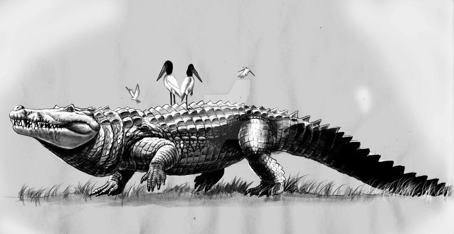 purussaurus by Gonzalezaurus