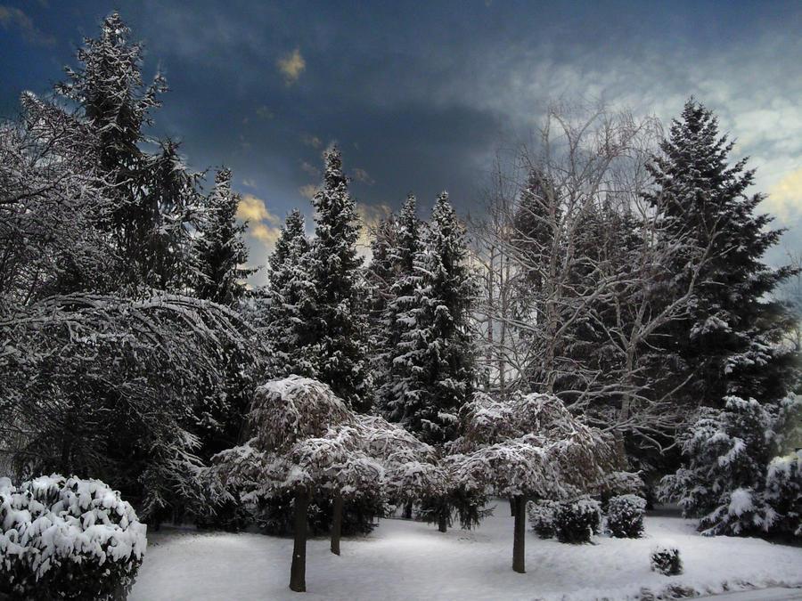 Winter blue... by sleepy0806