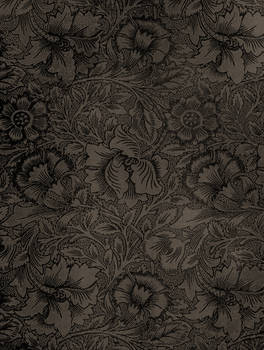 Vintage Wall Paper Texture by MGB-Stock