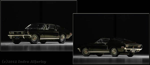 Scaled Mustang by combi77