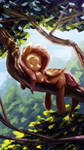 Fluttershy sleeping on a tree nothing else.