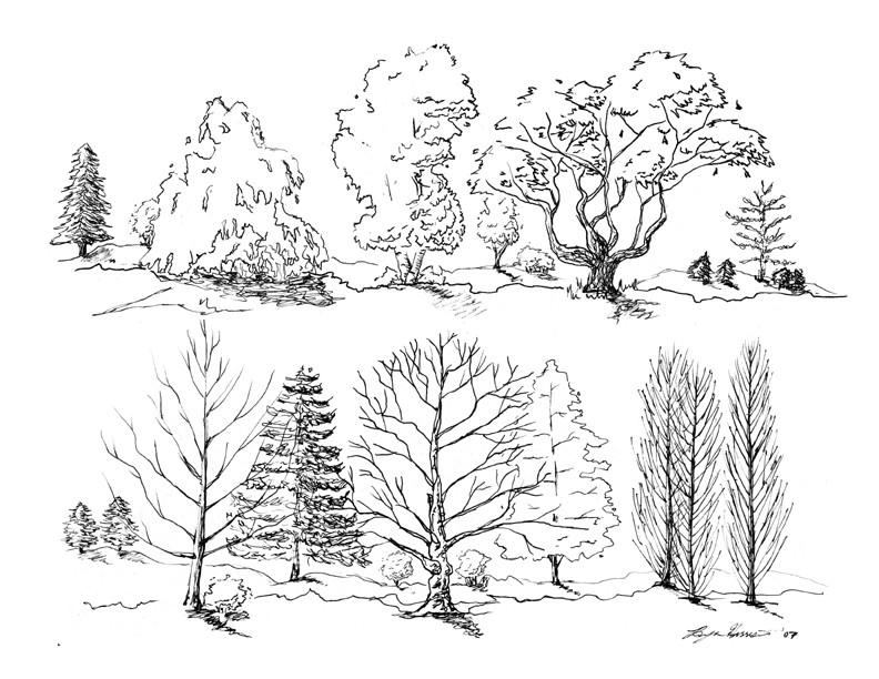 how to draw shadows in elevation and section in sketches