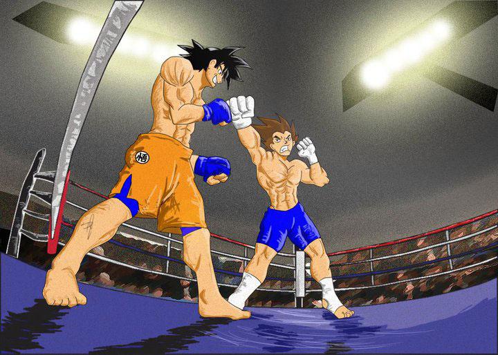 Goku Vs Vegeta MMA by Moshman88