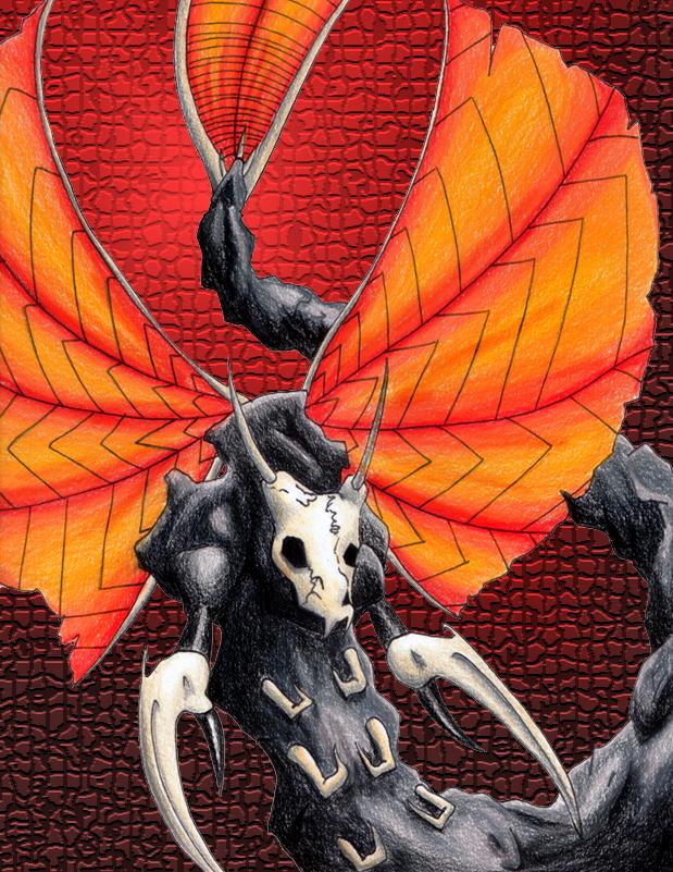 Skull Moth by cdabroom