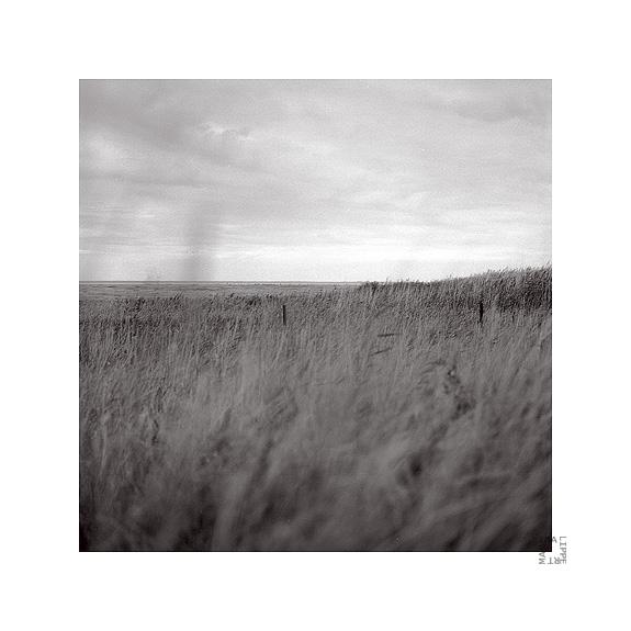 graslandschaften by lichtfaengerin