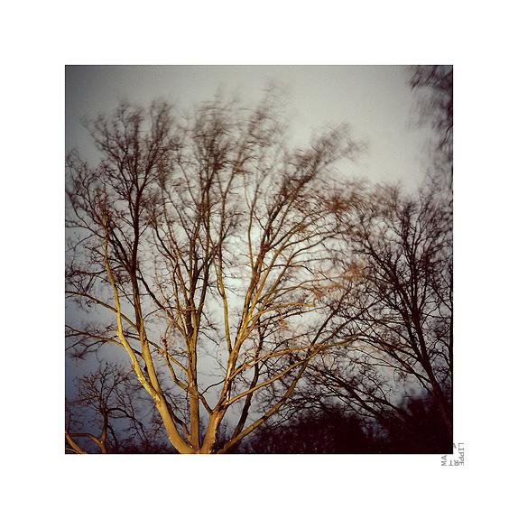 the change of wind by lichtfaengerin