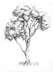 Beneath the Tree by m-gnomik