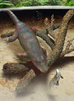 Eryops and Xenacanthus 3D