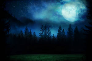 Premade Background 02 - Spooky Forest