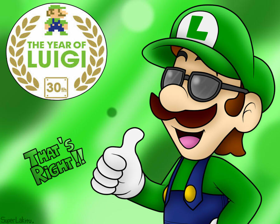 2013 - Year of Luigi, B*tches!!! B) by SuperLakitu