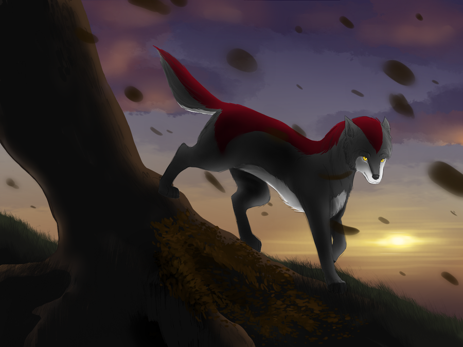 Contest entry - Fallen leaves in the sunset by Ardate