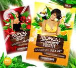 Tropical Summer Night Flyer