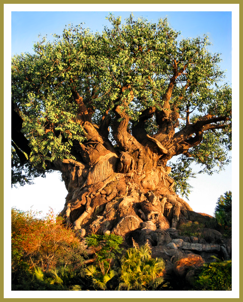 Tree of Life by OnlyMe722