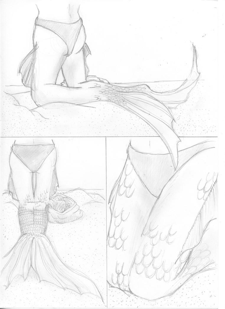 Request for Lasserine: Mermaid TF by Nolhyaa on DeviantArt
