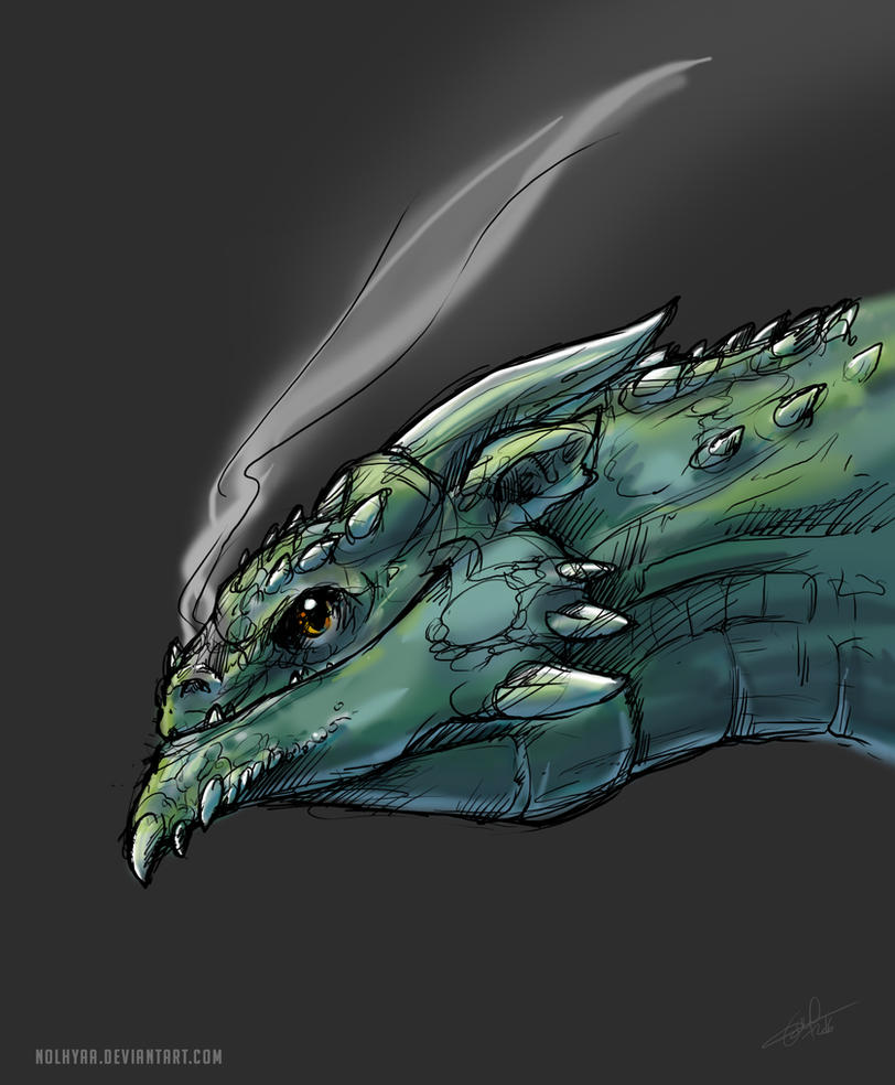 Dragon head by Nolhyaa