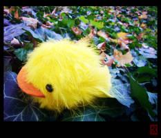 Reborn - Hibird