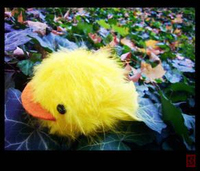 Reborn - Hibird by da-rk