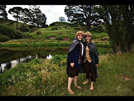 LOTR - Hobbits at The Shire