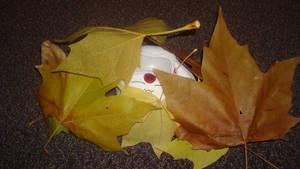 Mokona in Leaves 1