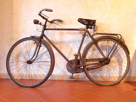 bicycle by varna-stock