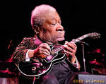 BB King - A Caricature Study