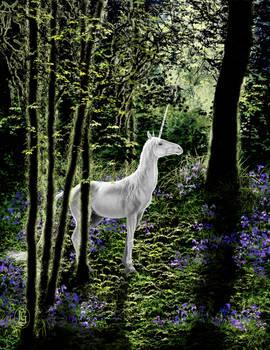 Unicorn and Bluebells