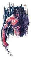 WEAPON X MARKER MADNESS