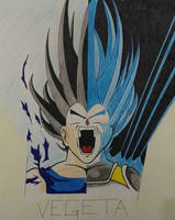 Vegeta: From a Saiyan to a God