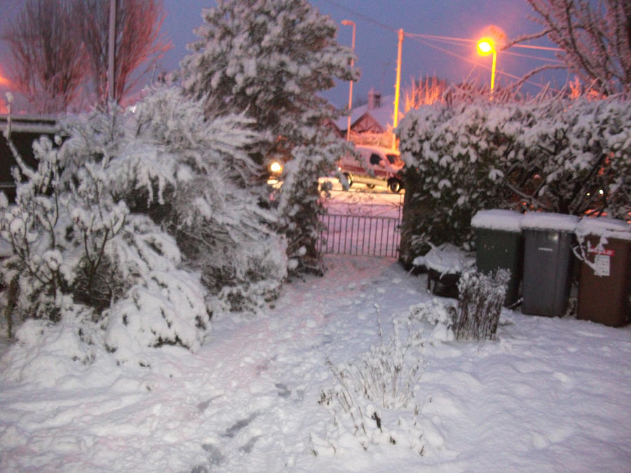 Snowy Evening2 by Floppy-Doggie