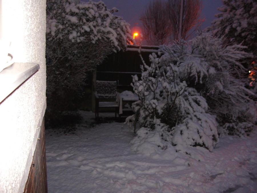 Snowy Evening3 by Floppy-Doggie