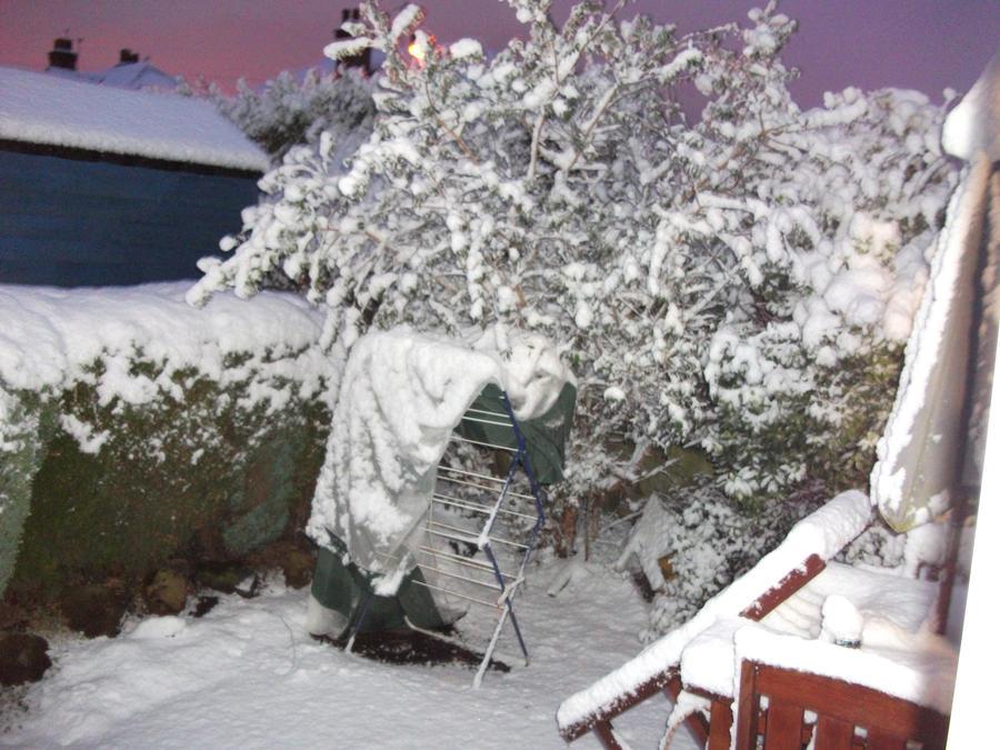 Snowy Evening5 by Floppy-Doggie